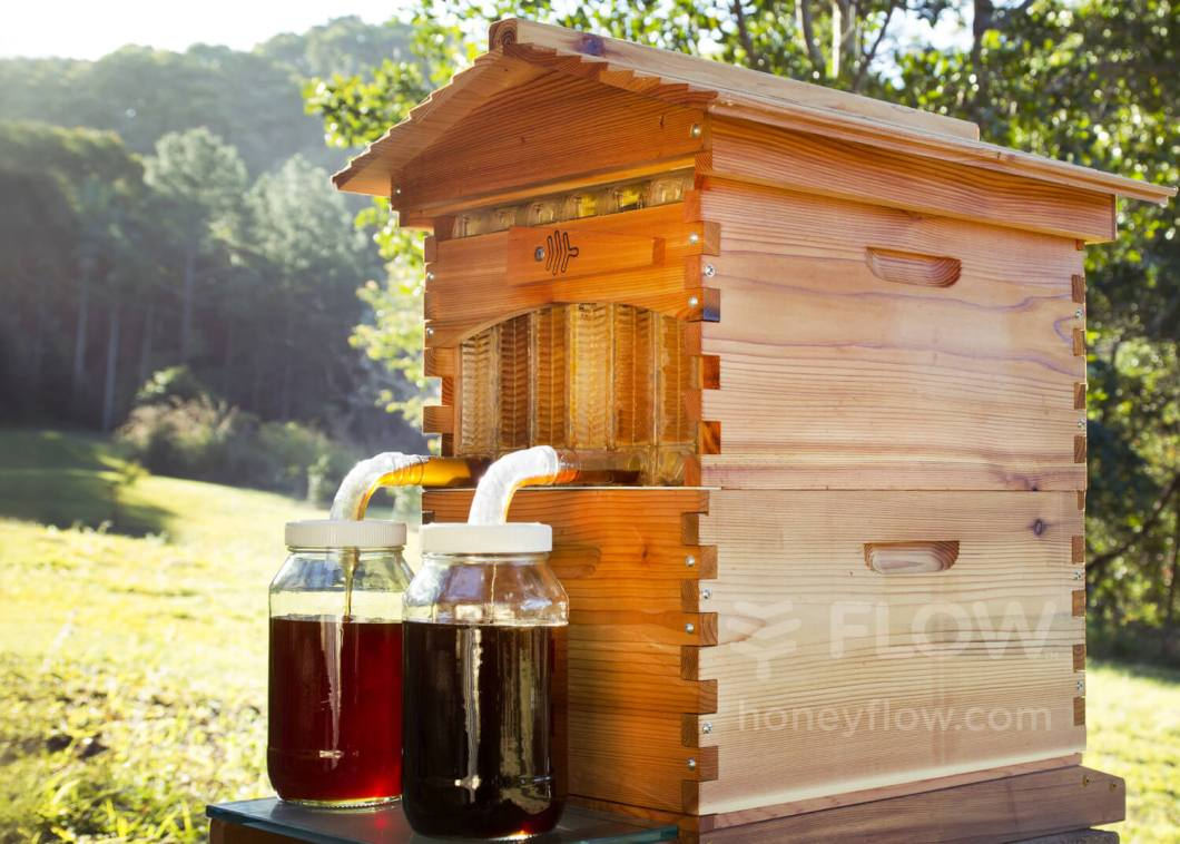 Flow Hive: Honey on Tap Directly From Your Beehive