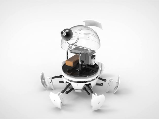 Xpider: World's Cutest Spider Robot