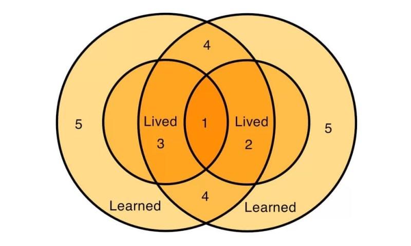 best illustrations diagram