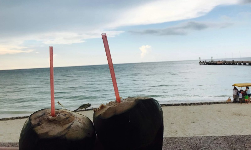 Coconut Drinks on Vacation
