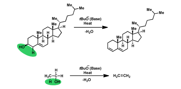 State Correct Term for These Basic Chemical Reactions