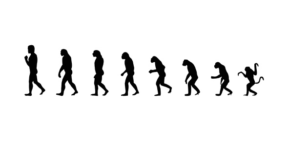 Top Evolution Quizzes, Trivia, Questions & Answers