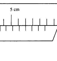 labeled diagram of vernier caliper [ 1662 x 499 Pixel ]