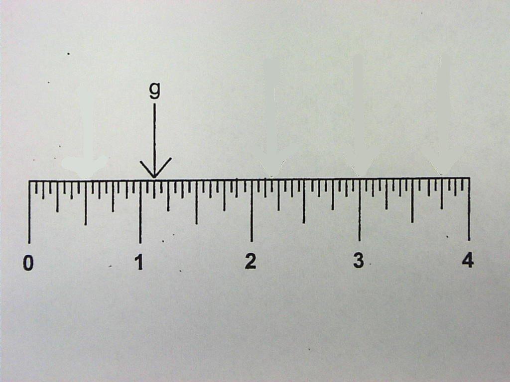 Ruler Measurement Review Quiz