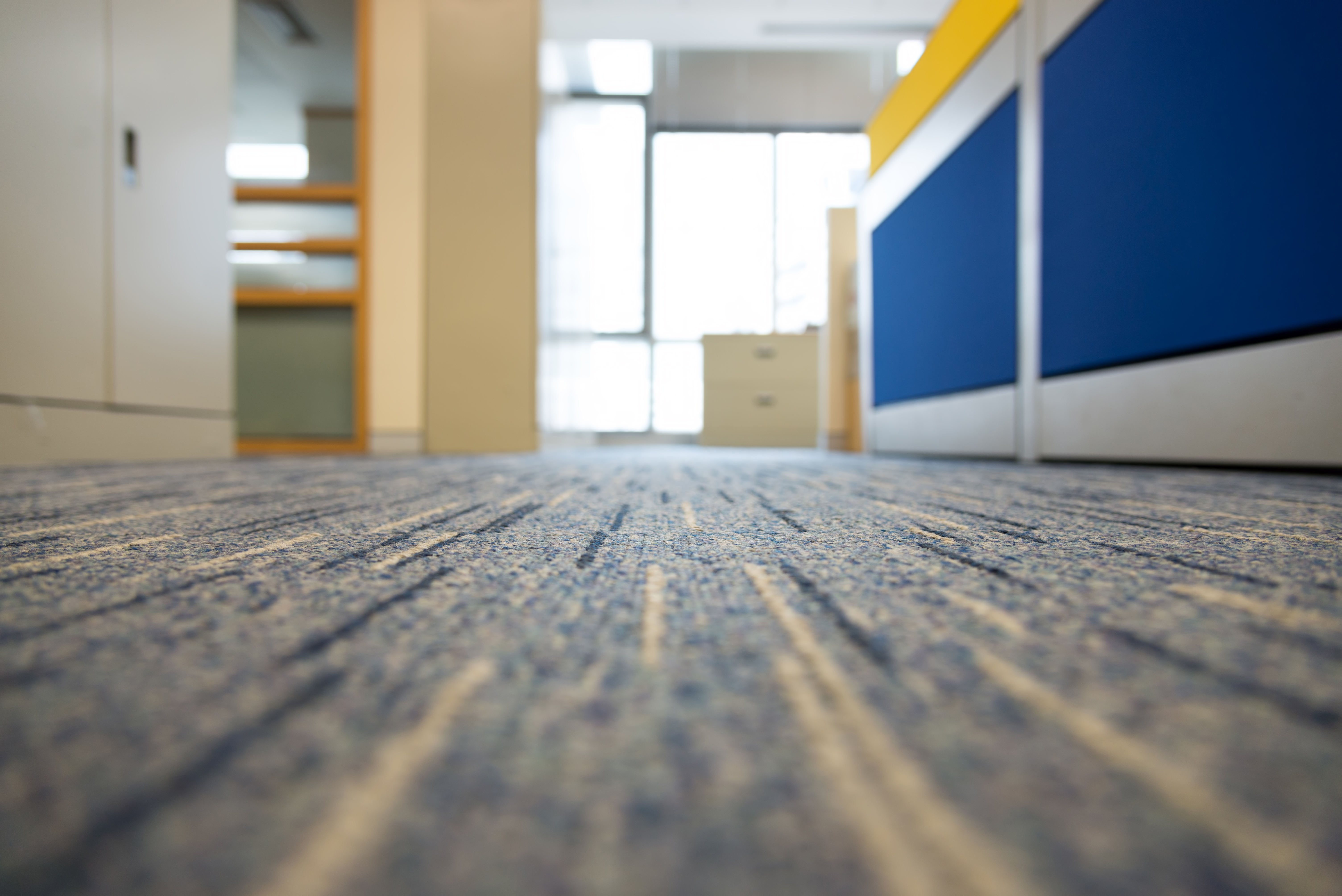 How to Maintain Office Carpets