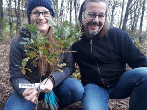proroba pflanzt Bäume