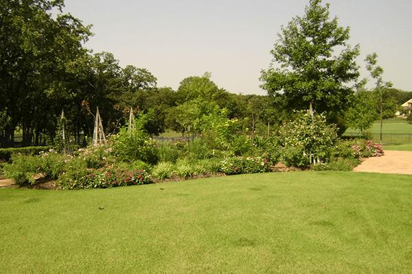 Lawn9