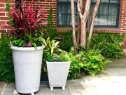 Add interest to your landscape with planters
