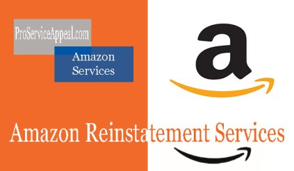 Amazon Reinstatement Services