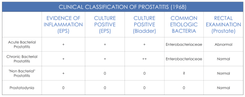 small resolution of what is the situation for prostatitis