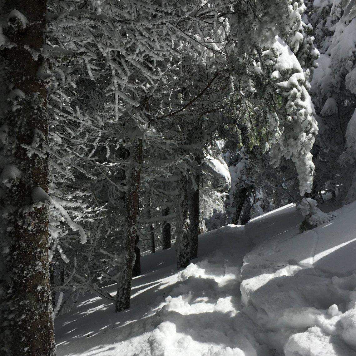 Garfield-Trail-20180421