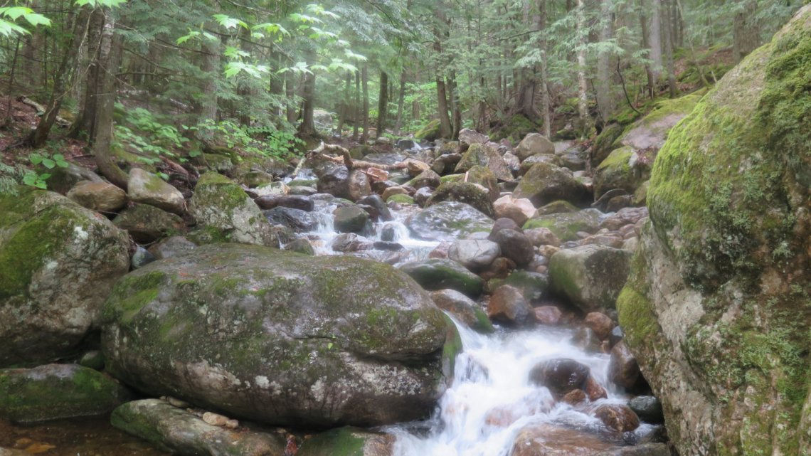 Small waterfall on a brook on the Imp Trail, White Mountain National Forest.
