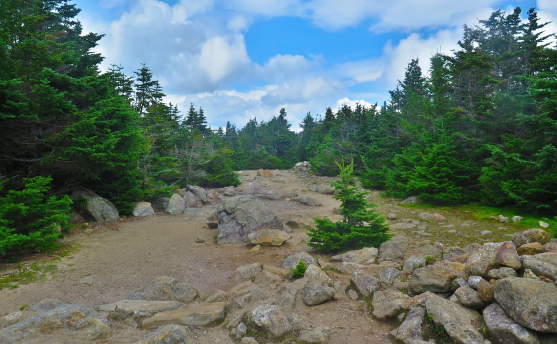 Summit-Carter-Dome-20190822