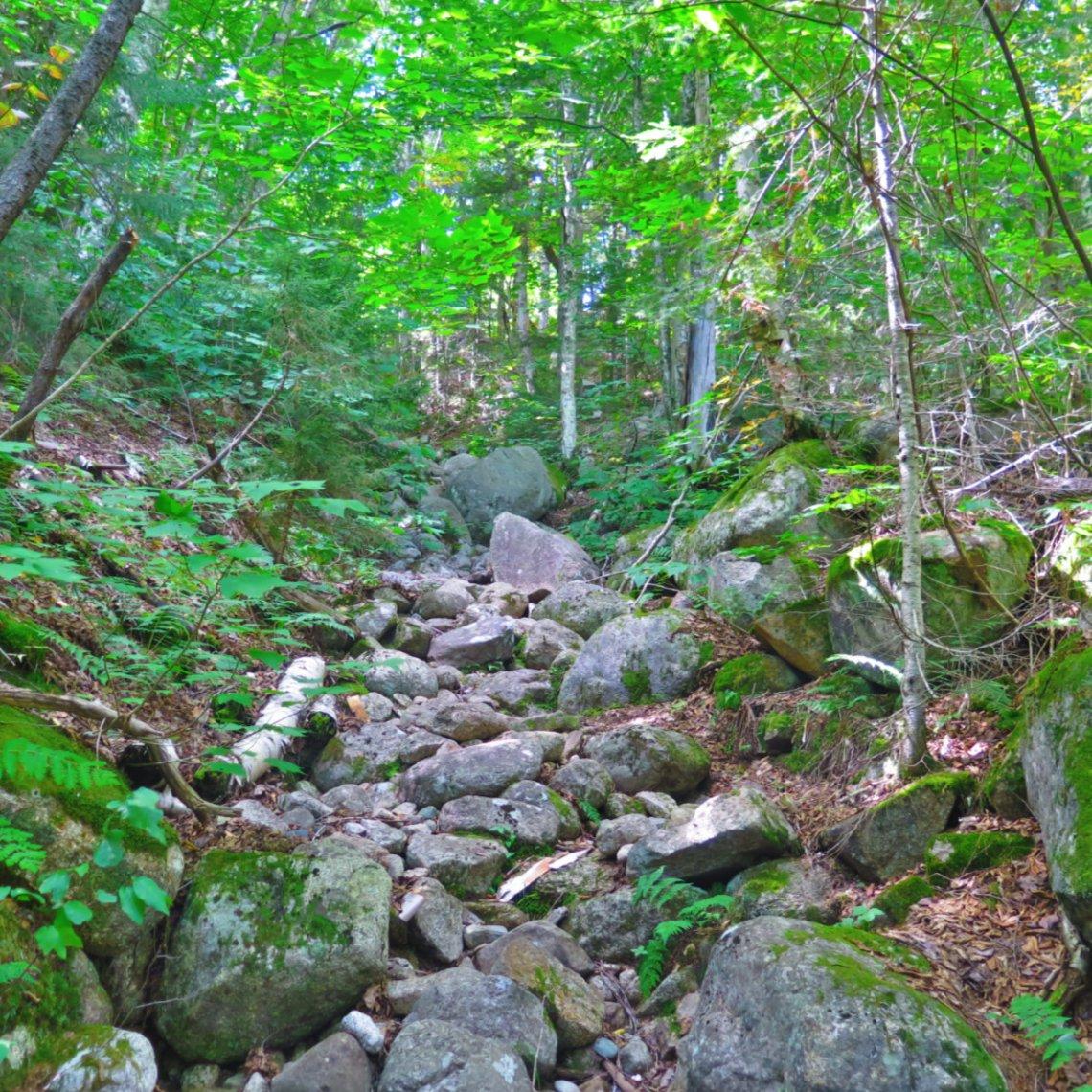 Zeacliff-Trail-Steep-20190907