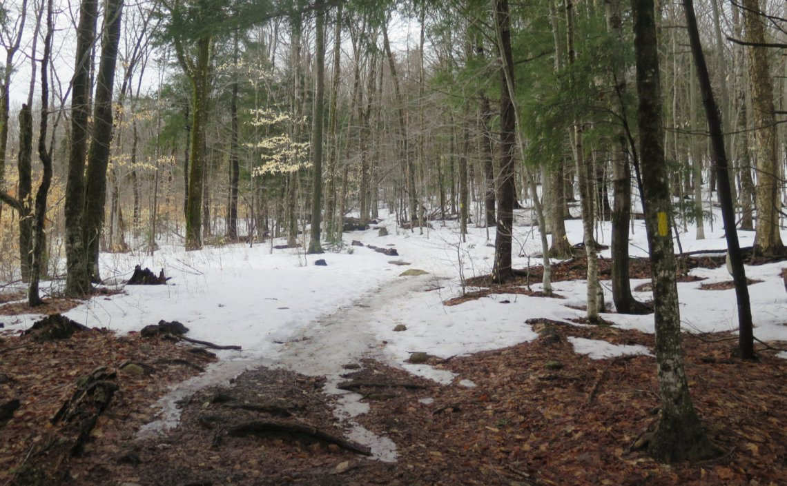 UNH-Low-Level-Trail-20200404