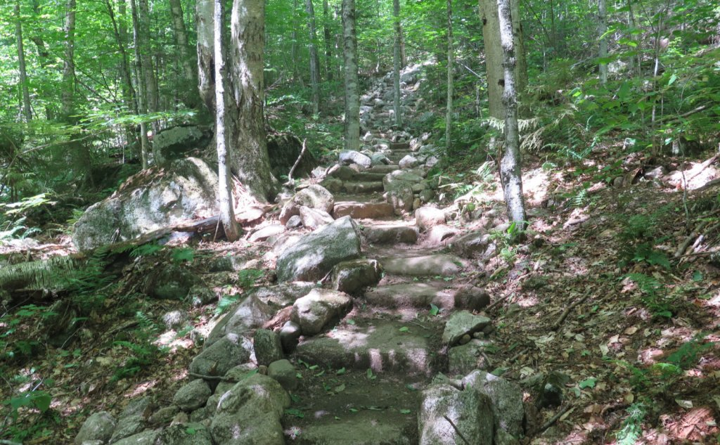 Stone stairs on Tecumseh Trail.