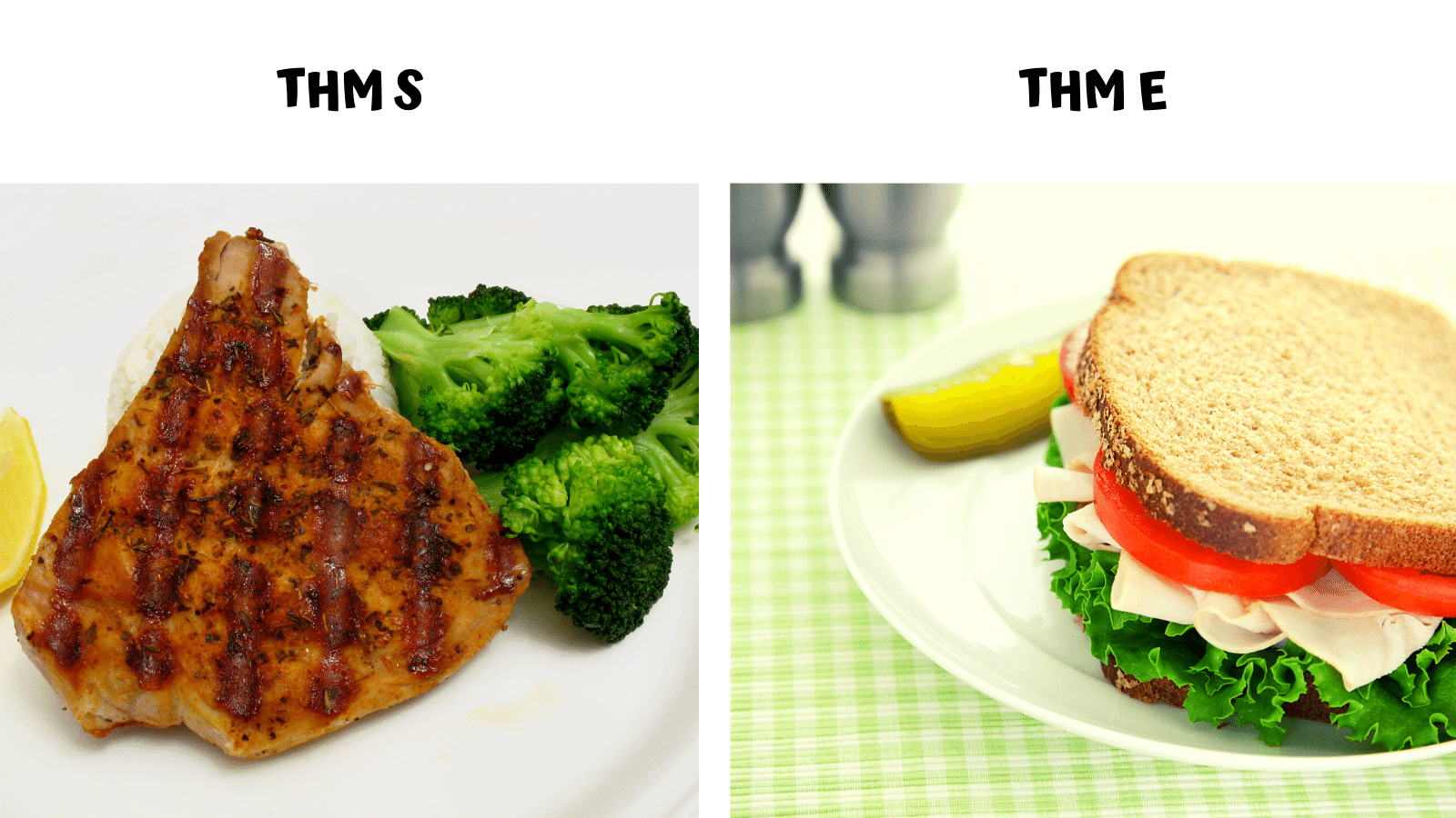 THM S & THM E Meal Examples