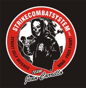 strikecombatsystem