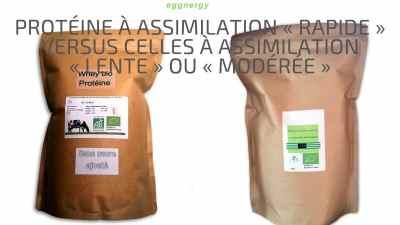 Protéine à assimilation «rapide» versus celles à assimilation «lente» ou «modérée»
