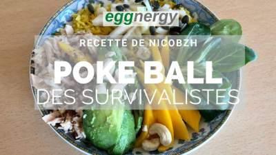 Poke Ball des survivalistes – recette