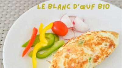 Read more about the article Blanc d'œuf Bio France