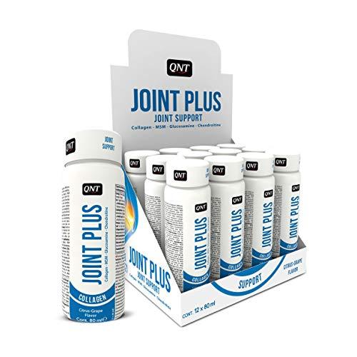 Qnt FID60088 Joint Plus Chondrotoïne et Glucosamine Mélange