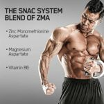 Optimum Nutrition Testostérone Booster ZMA 90 Capsules