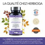 Articulations | Glucosamine, Chondroïtine, Harpagophytum, Zinc | Douleurs Articulaires, Perte de Souplesse et de Mobilité | 90 gélules = Cure de 45 Jours | Complément Alimentaire fabriqué en France