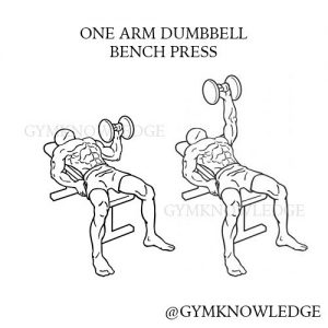 en arms manualpress