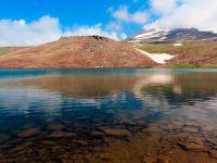Kari lake