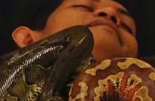 Fashion of Snake