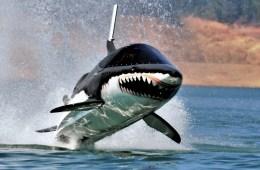 seabreacher wassersport trends neuheit neu funsport adrenalin abenteuer unterhaltung trendsportarten meer wasser see