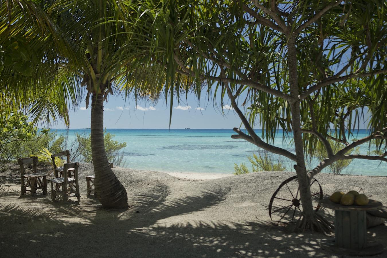 tahiti ferien urlaub tierwelt pflanzenwelt temperaturen wassertemperaturen meer sandstrand reise