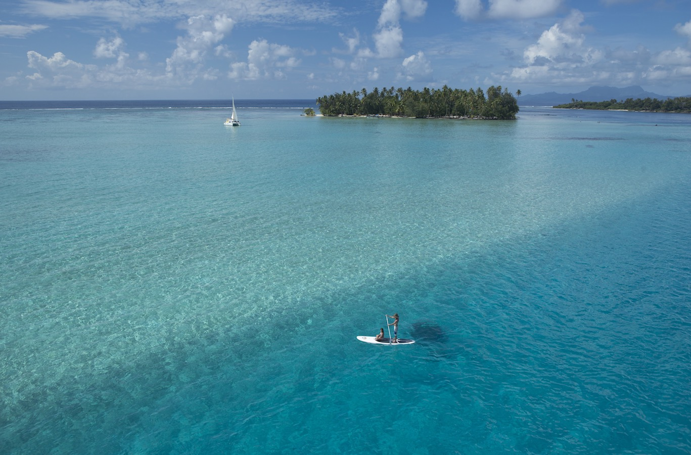 tahiti ferien urlaub tierwelt pflanzenwelt temperaturen wassertemperaturen meer sandstrand reise tierwelt