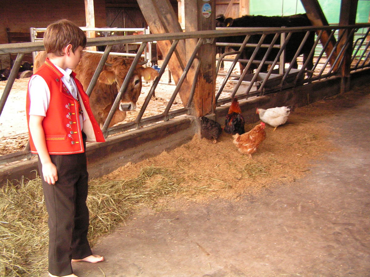 biofleisch biologisch fleisch fleischproduktion bauernhof fleischbauern viehzucht nachhaltig bio bier produkte nahrungsmittel schweiz schweizer tierschutz