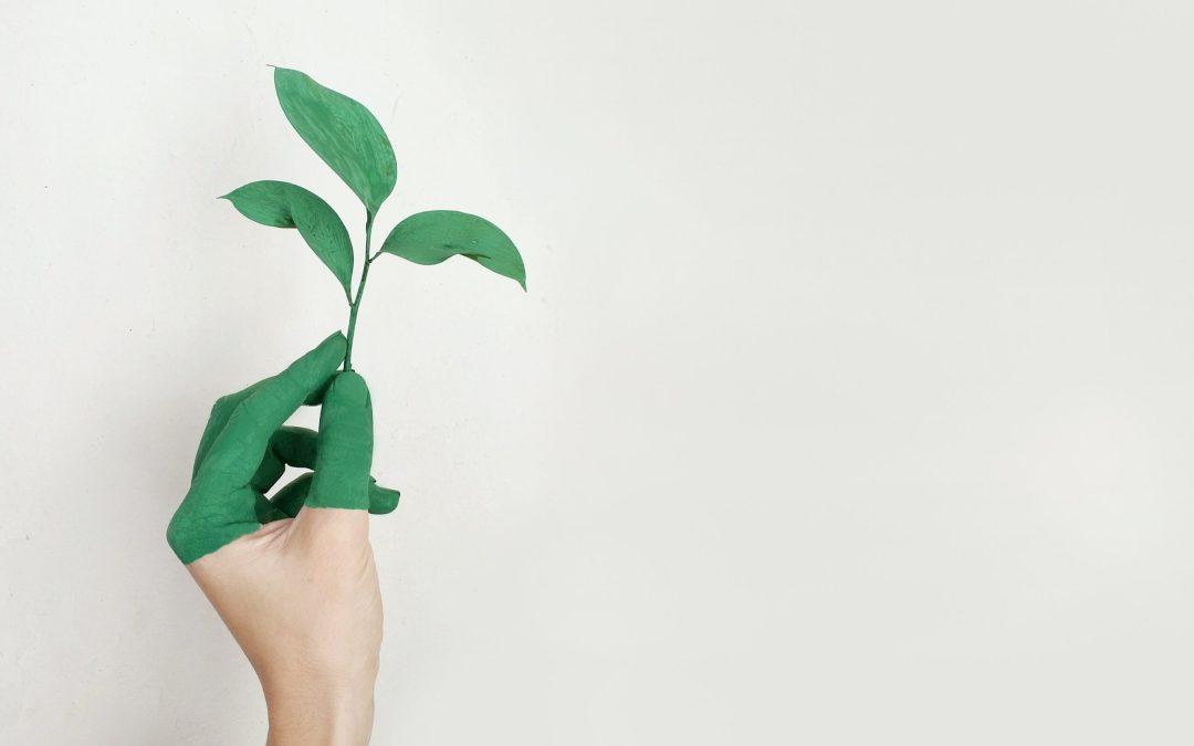 Poche proposte per l'ambiente
