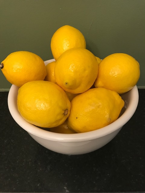 collection of lemon recipes