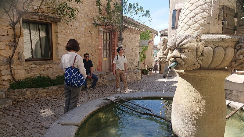 St Remy de Provence fountain