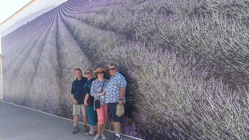 Lavender Provence group 4