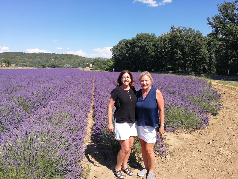 Lavender Provence field 2 friends