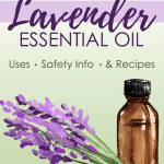 Lavender Essential Oil Uses Safety Info And Recipes Proverbial Homemaker