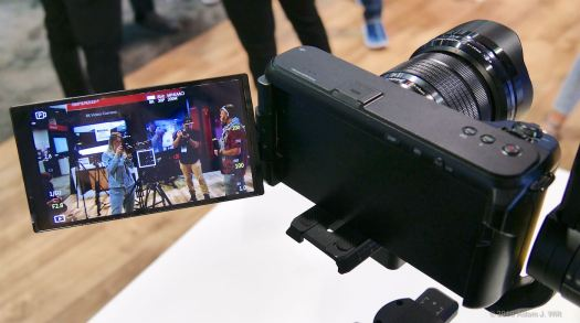 Yes, it has a proper fully-articulated monitor — as every such camera should!