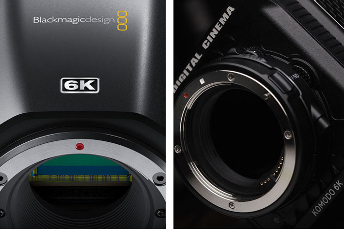 Will the Komodo (dragon) eat the Blackmagic Pocket CC 6K?