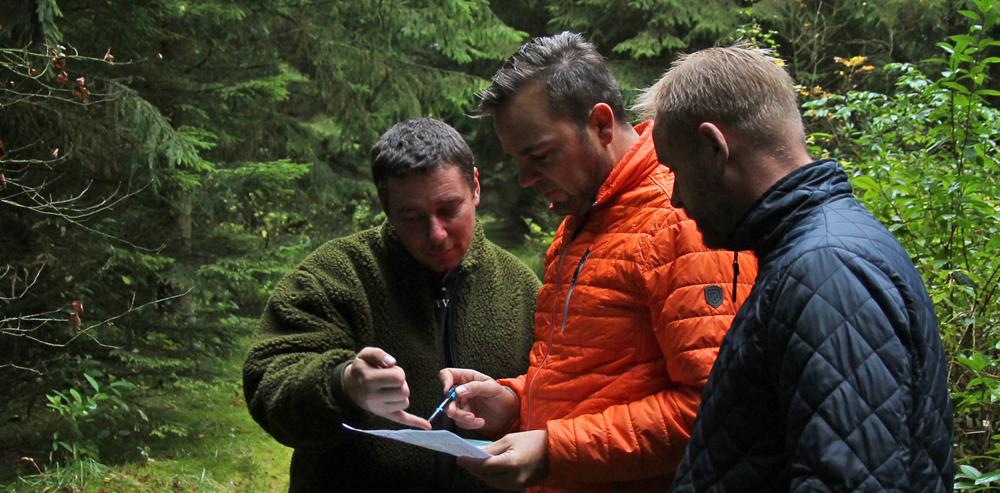 Skovfogedrådgivning