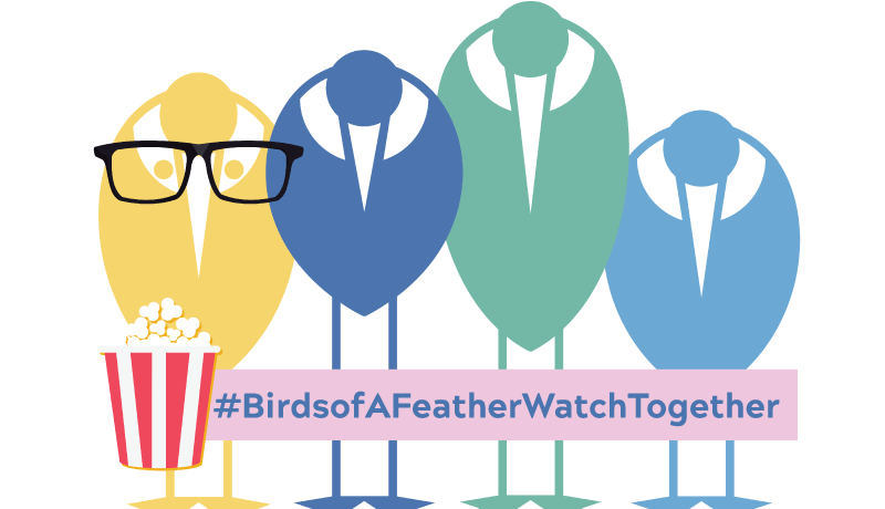 Birds of a Feather Watch Together