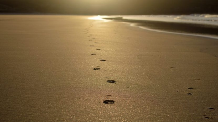 footprints, sand, beach, sun, photography