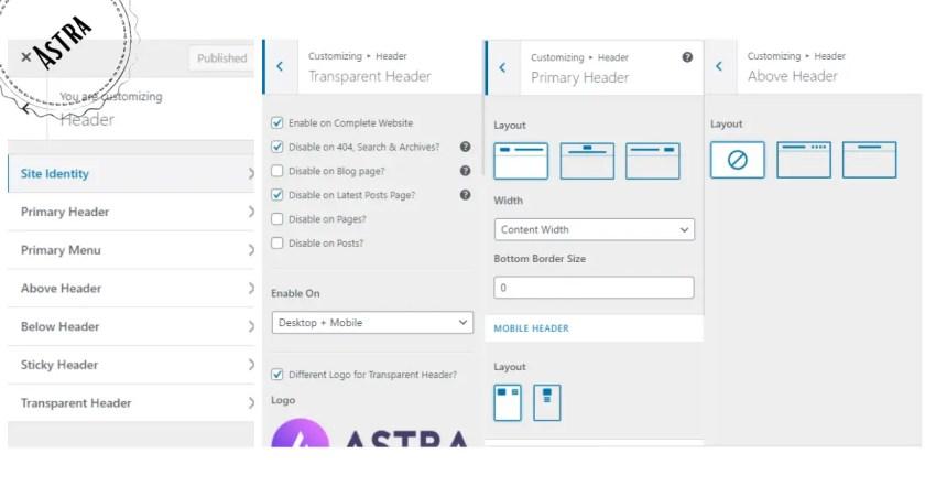 Header Customization of Astra