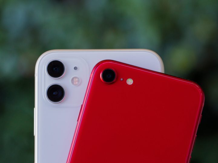 iPhone SE vs. iPhone 11 comparison: Which Apple phone to buy in 2020