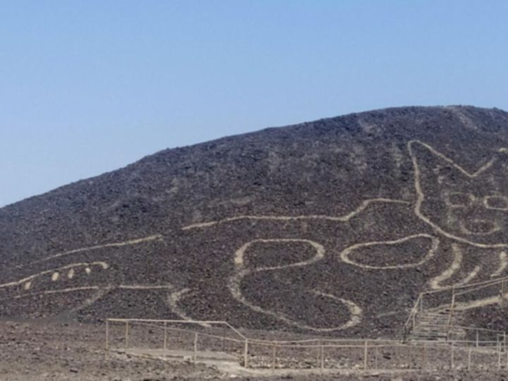 Archaeologists discover massive 2,000-year-old cat doodle carving in Peru