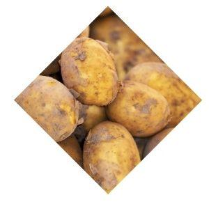 Pommes de terre Anaïs Bio d'Alsace